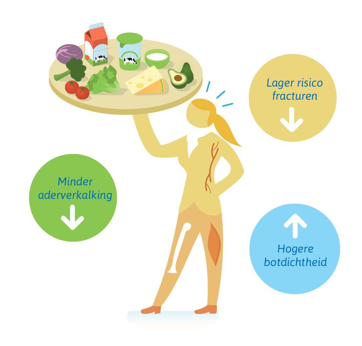 Vitamine D en K werken samen voor sterke botten en schone vaten